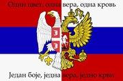 Курс сербского языка в учебном центре Nota Bene г.Херсон